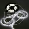 SVS Светодиодная влагозащищенная лента, 3528,30LEDs/M,2.4W/M,12V DC,IP65 5M -Белая 2