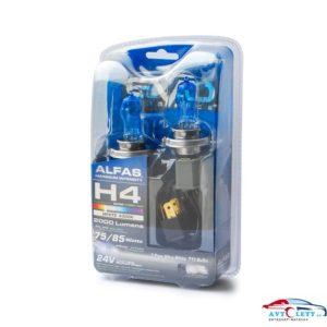 """Газонаполненные лампы EVO """"Alfas"""" 24V 4300К H4, комплект 2 шт."""